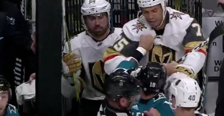 Michael Haley pulls Ryan Reaves off the bench and forces him to fight!