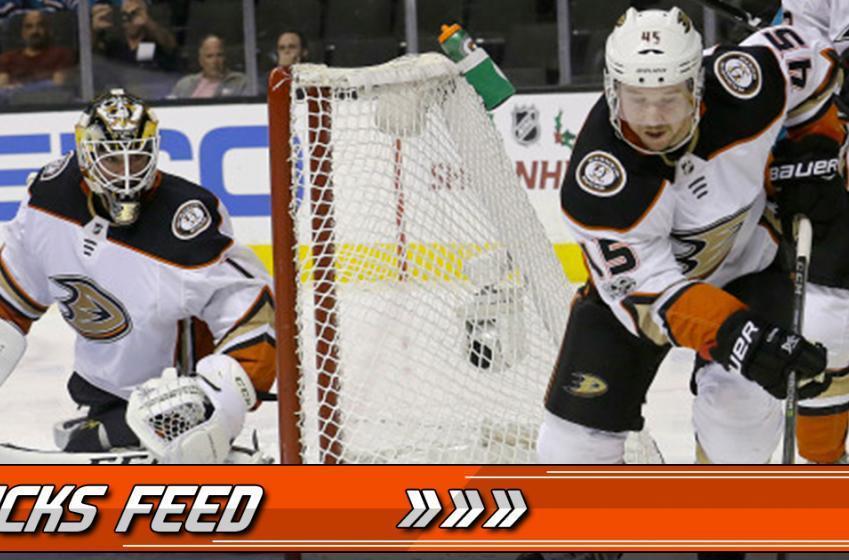 Breaking: Ducks assign veteran goaltender to the AHL