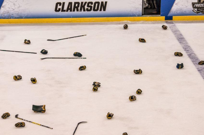 NHL head coach acquires hockey team