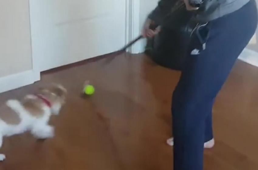 Artemi Panarin has found the cutest way to practice stick handling.