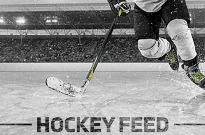 Report: Oilers add defenseman through free agency.