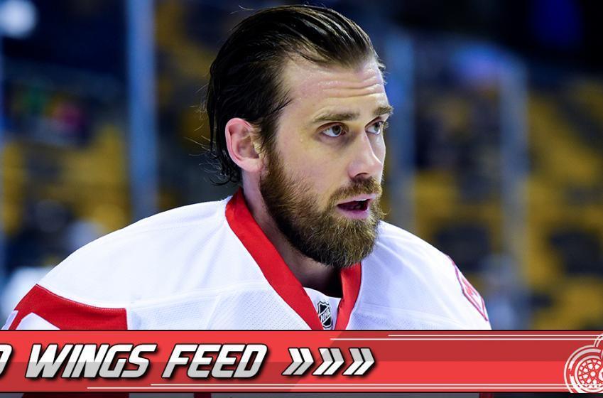 Henrik Zetterberg: a ray of light in the Wings season.