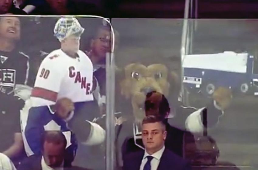 Kings mascot trolls Leafs head coach Sheldon Keefe during last night's game