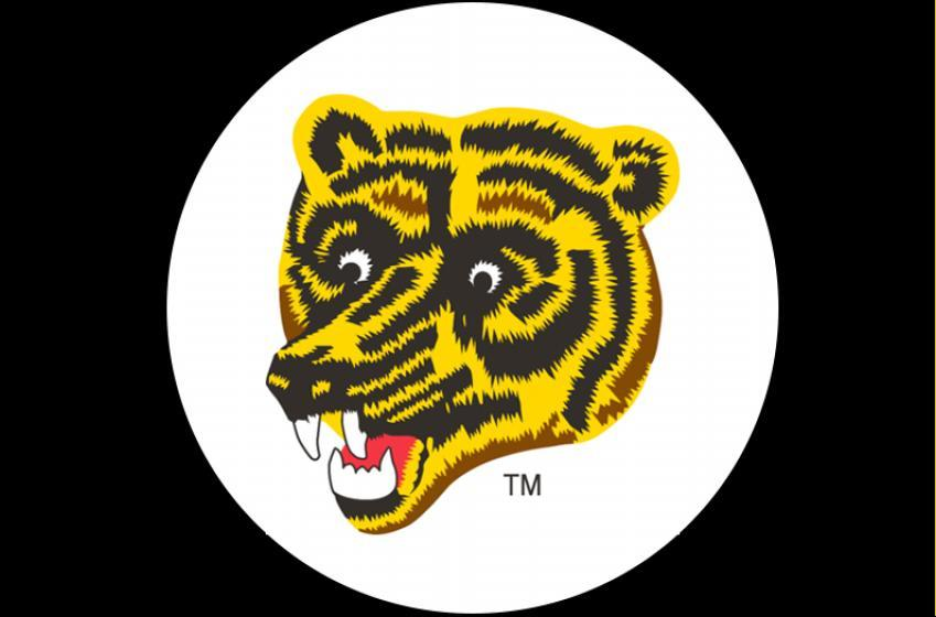 "Bruins bring back the ""meth bear"" logo for 2020-21!"