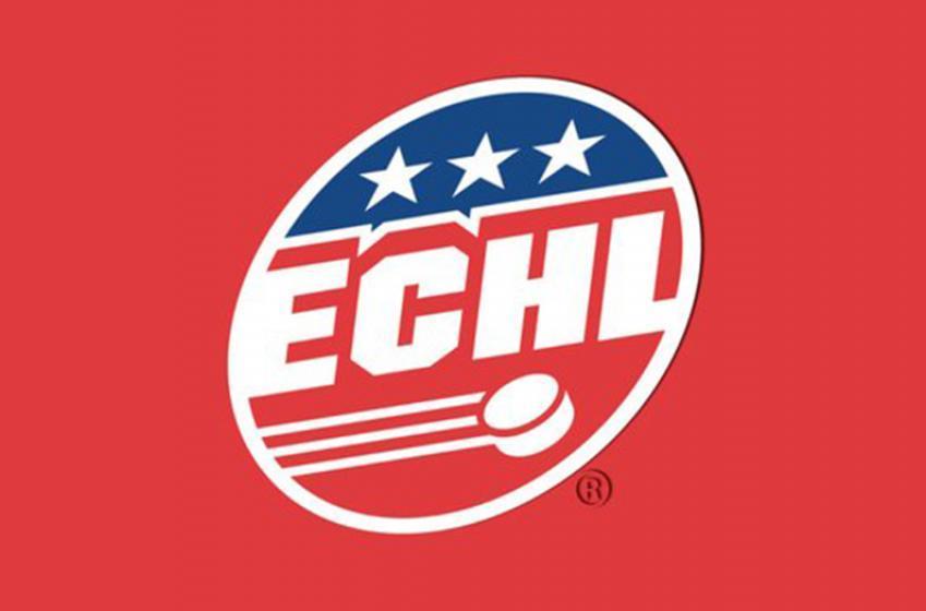 More than a half dozen ECHL teams will not play this upcoming season